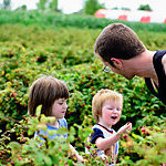 Man picking berries with children