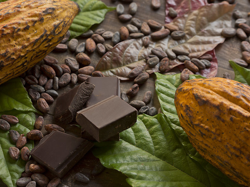 ISO - First International Standards for sustainable and traceable cocoa  just published