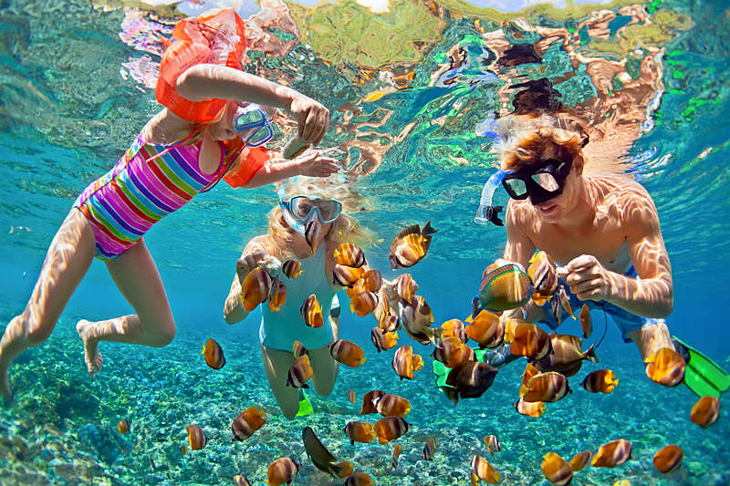 Family snorkeling underwater.