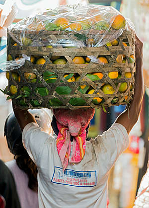 Back view of a man carrying a basket of mangos at the traditional rural street market, in North Bali.