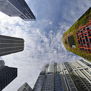 Looking up at office towers in Singapore