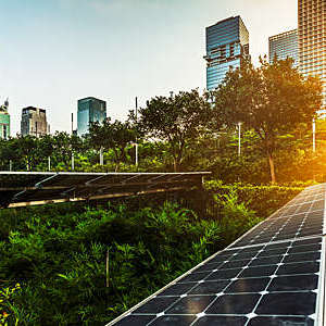 Solar panels surrounded by greenery in a modern city centre.