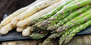 New harvest of white and green asparagus vegetable in spring season.
