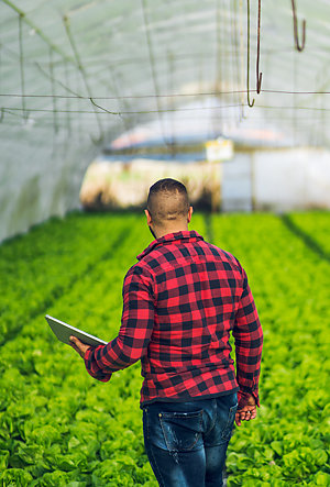 ISO - The future of farming