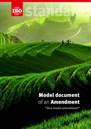 Титульный лист: Model document of an Amendment - Rice model amendment